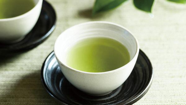 – 煎 茶 「寿 光」-
